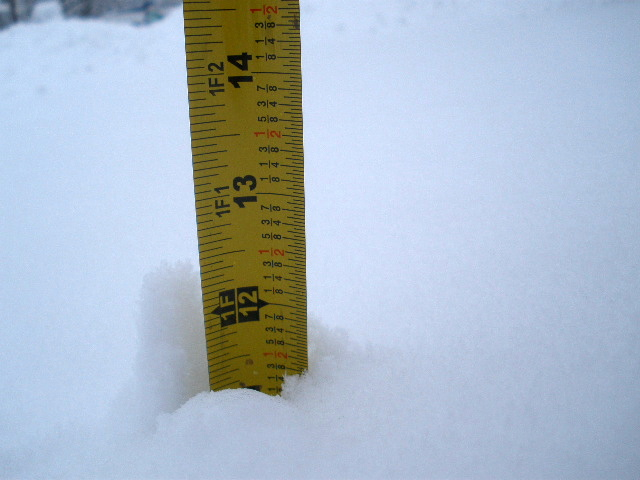 11 inches